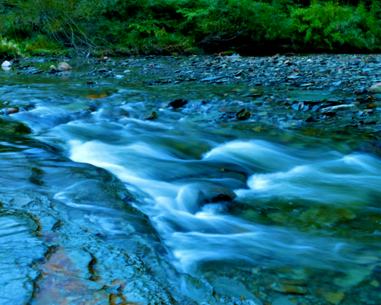 Asbury Woods Running Water